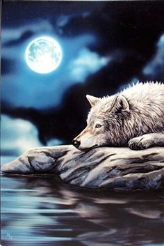 Quiet Reflection - Wolf Tile by Anne Stokes