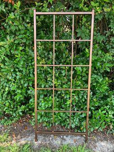 Classic Metal Garden Trellis Plant Trellis All Aluminum | Etsy Climbing Holds, Climbing Vines, Metal Garden Trellis, Plant Trellis, Custom Screen Doors, House Address Sign, Growing Peonies, Rose Vines, Ivy Plants
