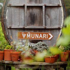 Munari Wines in the Heathcote Wine Region use Sangiovese and Vermentino Wine Varietals, Different Wines, Bottle Shop, Wine Making, Wineries, Beautiful Landscapes, Alternative, Victorian, Website