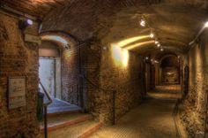 Espace Bazacle - Toulouse Ville Rose, Toulouse France, Expositions, Rugby, City, Travel, Tourism, Places, Viajes