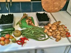 Our allotment harvest... this is where I get most of my ingredients for preserving
