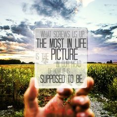 What screws us up most in life is the picture in our head of how it is supposed to be.