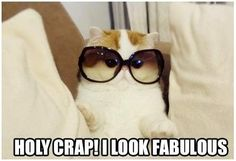 """@Suzanne, with a """"z"""". Earls...Puss, it's totally YOU!! lol!!!"""