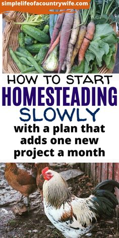 Homestead Farm, Homestead Gardens, Homestead Living, Farms Living, Homestead Survival, Survival Gear, Survival Prepping, Survival Skills, Survival Tattoo