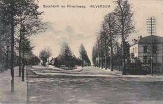 Havenstraat kruising taludweg, hilvertsweg en bosdrift