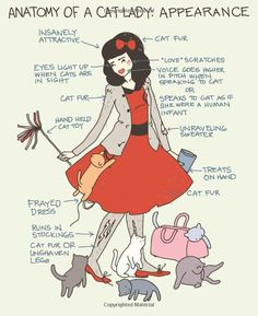 Cat Versus Human Yasmine Surovec: