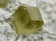Andradite var.Topazolite - Variante quarry, Poggio Corbolone, Livorno, Livorno Province, Tuscany, Italy Size: 1.73 mm