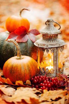 .~Beautiful autumn~.