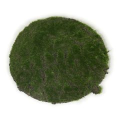 These cute round artificial green moss pads are a great addition to your Easter table. Easter Table, Party Supplies, Parties, Kids Rugs, Australia, Decorations, Holiday Decor, Green, Cute