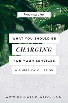 What Should You Charge for Your Services? — Big Cat Creative | Branding and Website Design for Creative Entrepreneurs