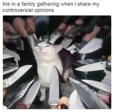 Yo en una reunión familiar cuando comento mi opinión sobre temas polémicos. Necesito contexto para la foto no obstante xd