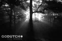 GoDutchDesign Photography by Vincent Zandkuijl