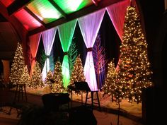 Black fabric behind...White fabric curtains with different colored up lights. Tree branches painted white.