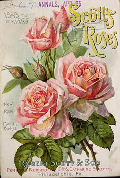 Decoupage Vintage, Vintage Ephemera, Vintage Postcards, Vintage Images, Decoupage Ideas, Garden Catalogs, Seed Catalogs, Vintage Seed Packets, Seed Packaging