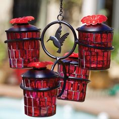 Hummingbird feeder...looks easy to clean, no dripping!