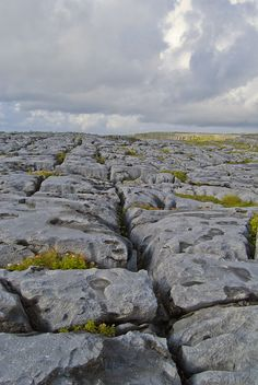 "The Burren (Irish: Boireann, meaning ""great rock"") is a karst-landscape region or alvar in northwest County Clare. It is one of the largest karst landscapes in Europe."