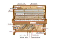 The anatomy of the upright piano. I always have kids asking me about what's in the piano and how it works