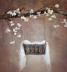 Digital backdrop background props newborn baby girl vintage rustic retro Cherry branch basket swing / pic 172 by LaceCloudStudio on Etsy Baby Girl Photography, Newborn Photography Props, Photography Backdrops, Photoshop Photography, Baby Girl Pictures, Newborn Pictures, Foto Montages, Baby Poses, Digital Backdrops