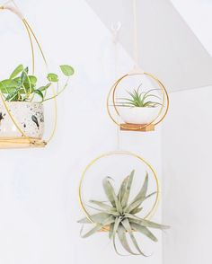 Brass Ring Hanging Planter DIY is part of Green Home Accessories Hanging Planters This specific project came to me after seeing a photo of a midcentury log holder I was in - Diy Hanging Planter, Diy Planters, Ceramic Planters, Home Decoracion, Easy Diy Gifts, Homemade Gifts, Beautiful Mess, Messing, Decoration