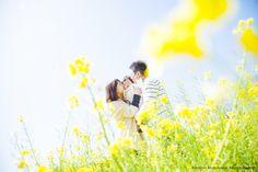 モリケンのファミリーフォト ~菜の花~桜編~ - ○○しゃしんのじかん http://blog.goo.ne.jp/moriken_photo/