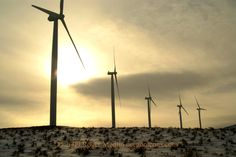 Ranching and mining are the traditional industries in Eastern Oregon but wind turbines are becoming a new source of income and controversy for residents.