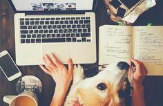 Des astuces pour concilier boulot et projets à l'extérieur du travail - Blogue d'affaires Lime