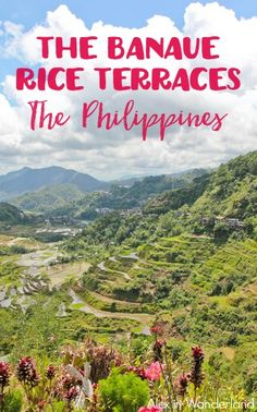 Tips for exploring the Philippines' Banaue Rice Terraces on a budget. Alex in Wanderland Philippines Destinations, Philippines Travel Guide, Visit Philippines, Philippines Beaches, Phillipines Travel, Banaue Rice Terraces, Travel Around The World, Around The Worlds, Tourist Spots