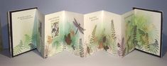 My first Hand-made book years ago. A Concertina by Nancy Mazza