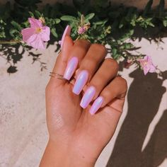There are three kinds of fake nails which all come from the family of plastics. Acrylic nails are a liquid and powder mix. They are mixed in front of you and then they are brushed onto your nails and shaped. These nails are air dried. Acrylic Nails Natural, Best Acrylic Nails, Acrylic Nail Designs, Natural Nails, Holographic Nails Acrylic, Fluorescent Nails, Trendy Nails, Cute Nails, Manicure And Pedicure