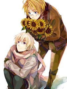 RusAme sunflowers aph