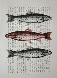Classroom Art Project idea (overlay Gyotaku with students' names)