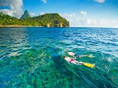 Snorkeling in St. Lucia. Anse Chastanet, Soufriere, St. Lucia. Set among 600 acres of tropical forest.
