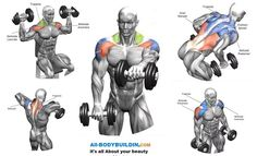 Dumbbell Complex Workout For Your Shoulders And Back