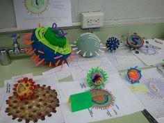 Virus Model Project High School Chemistry, High School Biology, High School Science, Life Science, Biology Projects, Science Projects, School Projects, Teaching Cells, Teaching Biology