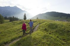Plan Your Trip: ✓ Skiing ✓ Cities ✓ Lakes ✓ Hiking ✓ Spa ✓ Restaurants ✓Practical Travel Information ✓ Insiders' Tips ➢ Find out Nordic Walking, Hall In Tirol, Travel Information, Plan Your Trip, Austria, Travel Guide, Skiing, Spa, Mountains