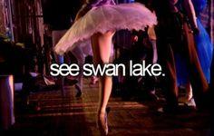 See swan lake