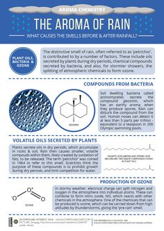 The third graphic in the 'Aroma Chemistry' series looks at the chemical compounds that cause the smells before & after rain