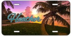 CUSTOM PERSONALIZED LICENSE PLATE BEACH PALM TREE AUTO TAG #putapiconit