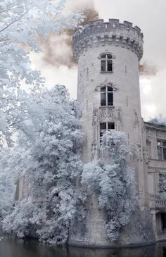 This reminds me of Winter in Snow Like Ashes