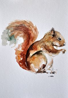 Items similar to ORIGINAL Watercolor Painting Red Squirrel Portrait Inch on Etsy - animals - Watercolor Drawing, Watercolor Animals, Watercolor Paintings, Animal Paintings, Animal Drawings, Squirrel Illustration, Red Squirrel, Animal Graphic, Oeuvre D'art