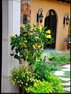 Garden Design Garden Design With French Country Garden Ideas - French country garden