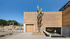 Mexican architecture firm RIMA Design Group has connected several structures made from rammed earth with wood pergolas to form an arts centre in Los Cabos, Mexico. San Jose Del Cabo, Concrete Pathway, Rammed Earth Wall, Basement Floor Plans, Gravel Patio, Wood Pergola, Tadelakt, Sustainable Architecture, Public Architecture