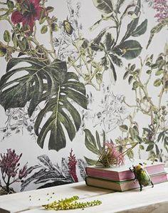 Seasons-Summer-Tropical-Bloom-wallpaper - interior - colour - floral