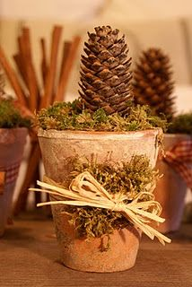 Great idea for an easy and natural Christmas Decoration #ThanksGiving #Home #Decor ༺༺  ❤ ℭƘ ༻༻