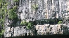 My Travel To The Awesome Underground River, Puerto Princesa, Palawan, Philippines