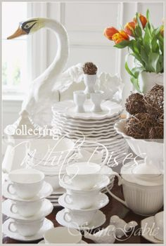 Tips for collecting white dishes.