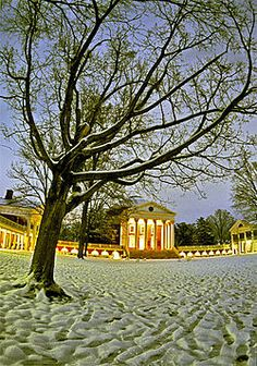 The Lawn during winter