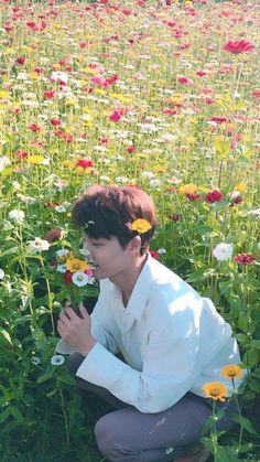flower boy Its all starts with smelling them till he ends up wanting to eat them 😂 Baekhyun, Kaisoo, Jackson Wang, Michael Jackson, Exo Lockscreen, Kim Jongin, Billy Elliot, Kpop Exo, Exo Members