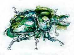 Watercolor Animals by Abby Diamond - Watercolor/Gouache/Ink Wash rings aesthetic decorations Watercolor Paintings Of Animals, Animal Paintings, Animal Watercolour, Bug Art, Nature Artists, Insect Art, A Level Art, Diamond Art, Diamond Rings