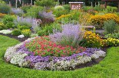 Shadbush Deer Resistant Garden by Garden Boss, via Flickr